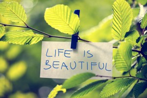 Life is Beautiful concept with a handwritten inspirational message attached to a twig of fresh green leaves with a wooden clothes peg, toned retro effect.
